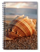 Seashell In The Sand Spiral Notebook