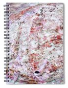 Seashell Of Pearl  Spiral Notebook