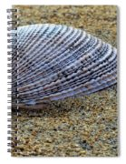 Seashell On The Sand Spiral Notebook