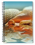 Seashell Reflections On Water Spiral Notebook