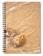Seashell Turbulence Spiral Notebook