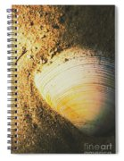 Seashells And Beach Colours Spiral Notebook