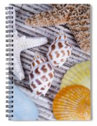 Seashells And Starfish Spiral Notebook