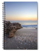 Seashells At The Seashore Spiral Notebook