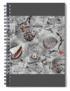 Seashells Collage Of Any Color Spiral Notebook