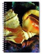 Seashells Spiral Notebook