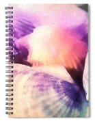 Seashells Painted  Spiral Notebook