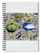 Seashore Colors Spiral Notebook