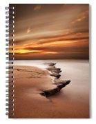 Seashore Wonders Spiral Notebook