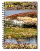 Seaside Marsh Spiral Notebook