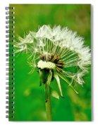 Season Of Flights Is Open. Spiral Notebook