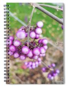 Seasonal Charm Spiral Notebook