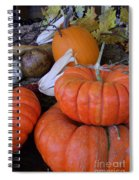Seasonal Giants Spiral Notebook