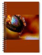 Season's Greetings- Iced Light Spiral Notebook