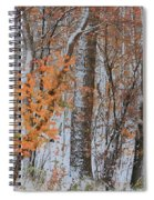 Seasons Overlapping Spiral Notebook