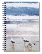Seaspray Spiral Notebook