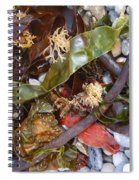 Seaweed And Pebbles Spiral Notebook