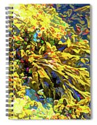 Seaweed On Rock In Ocean Spiral Notebook