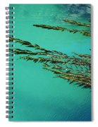 Seaweed Patterns Spiral Notebook