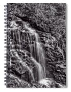Secluded Falls - Bw Spiral Notebook
