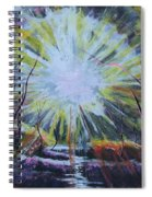 Secret In The Forest Spiral Notebook