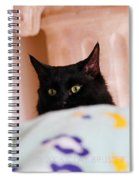 Secret Mission For Catnip Spiral Notebook