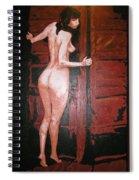 Secret Spiral Notebook