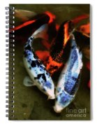 Secrets Of The Wild Koi 10 Spiral Notebook