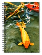 Secrets Of The Wild Koi 11 Spiral Notebook