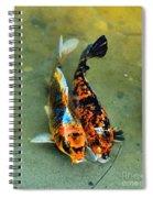 Secrets Of The Wild Koi 15  Spiral Notebook