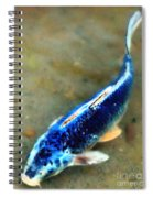 Secrets Of The Wild Koi 18 Spiral Notebook