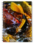 Secrets Of The Wild Koi 2 Spiral Notebook