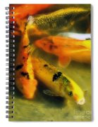 Secrets Of The Wild Koi 9 Spiral Notebook