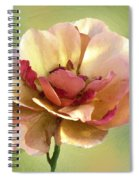 Seductive Spiral Notebook