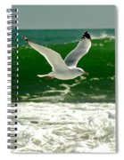 See Gull Spiral Notebook