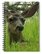 See Me Now Spiral Notebook
