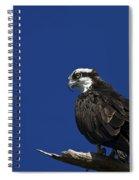 See No Evil Spiral Notebook