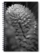 Seed Pod Black And White Spiral Notebook