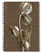 Seed Pods Macro Spiral Notebook