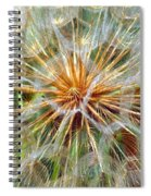 Seeds Spiral Notebook