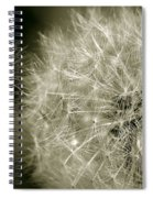 Seedy Dandelion Spiral Notebook