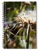 Seedy Neighborhood Spiral Notebook