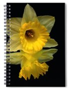 Seeing Doubles Spiral Notebook
