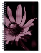 Seeing Life Through Rose-colored Glasses Spiral Notebook