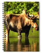 Seeing My Reflection Spiral Notebook