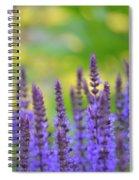 Seeing Purple Spiral Notebook