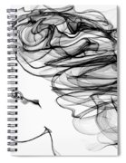 Seer Of Truth Spiral Notebook