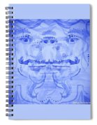 Seer-synthesis Self Portrait Spiral Notebook
