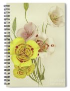 Sego Lily   Calochortus Spiral Notebook
