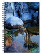Sekani Rocks Tahoe Spiral Notebook